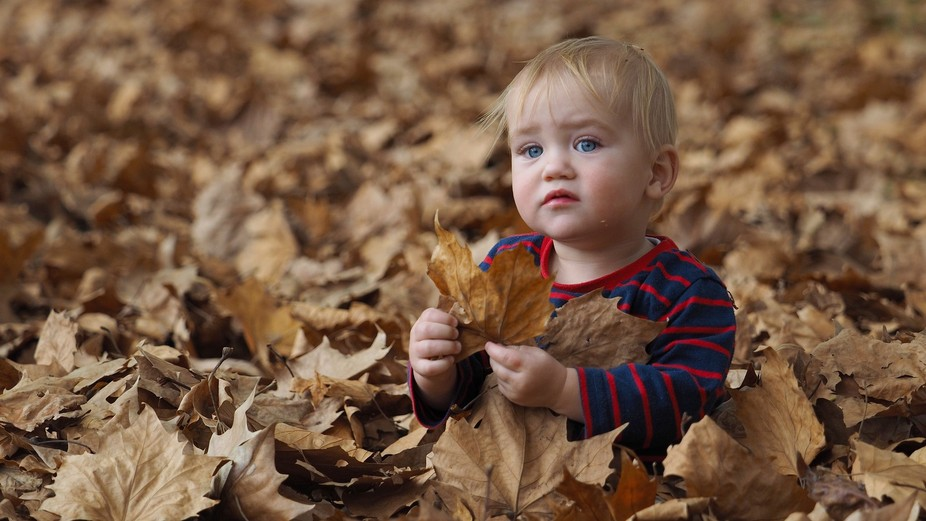 P5020042 Ethan in leaves 2