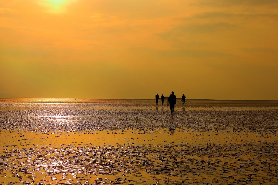 Some friends I shot walking into the sunset. West Wirral.