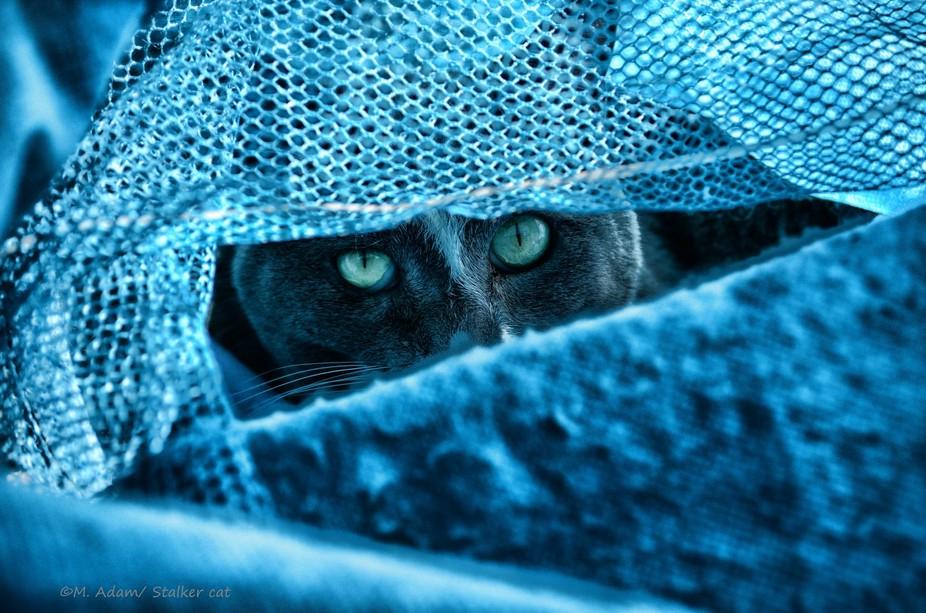 Sneaky girl