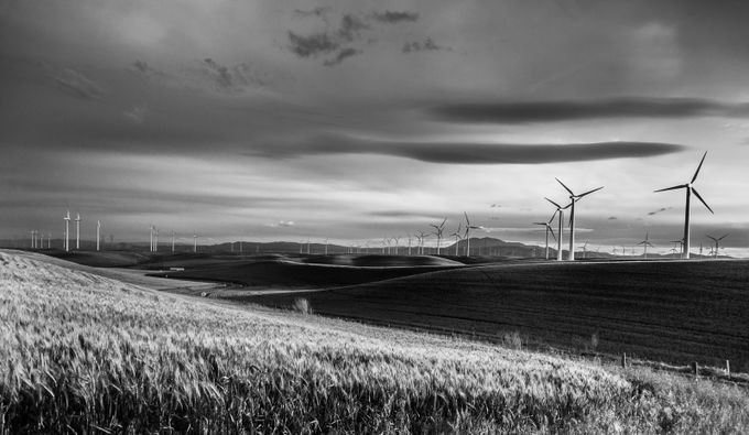 untitled by WestBoundaryPhotography - 200 Windmills Photo Contest