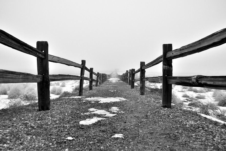 Thick fog obscures the snow and this path.