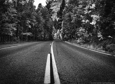 Highway 158 in Black and White