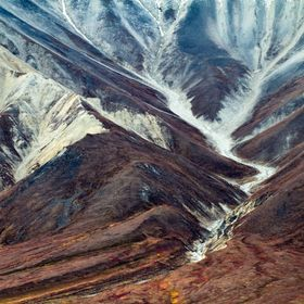 Late fall colors on the hills highlight the snow in a gully in Denali National Park.
