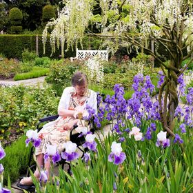 Took my disabled mother to see the gardens at Arley Hall in Cheshire, where this candid shot amongst the iris and wisteria was taken in the rose ...