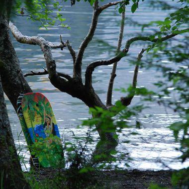 First week of June 2015 Horne Lake