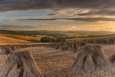Hay Stooks