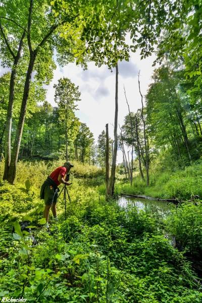Explring the Frontenac Provincial Park
