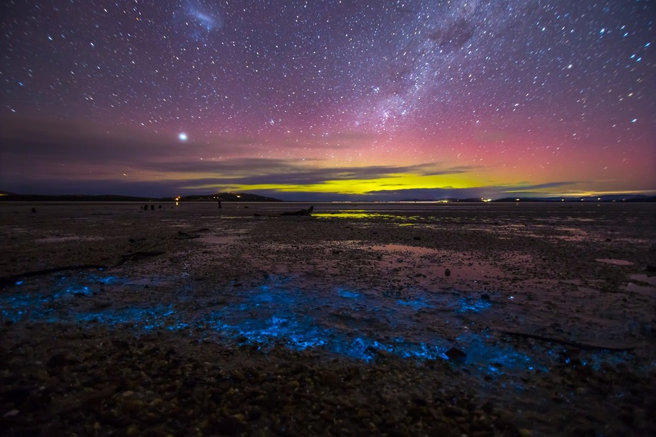 One of my captures from couple of nights ago. Originally I was chasing the Aurora Australis at Ho...