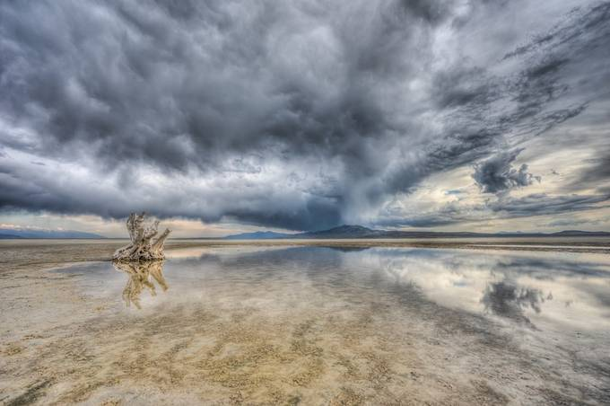 Lonely Stump - Great Salt Lake by gappman - HDR Landscapes Photo Contest