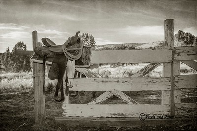 Saddle and Gate