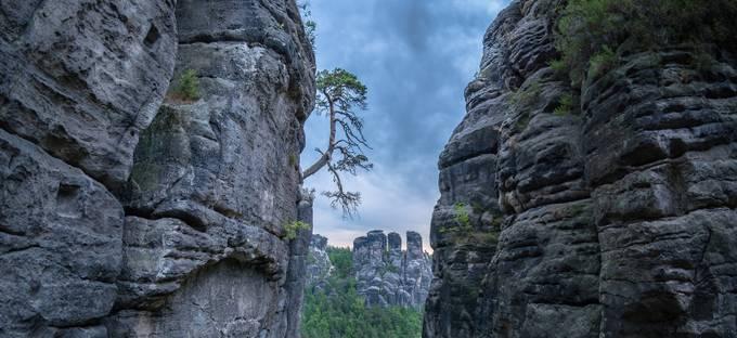 Survivor. by Aleksandersson - Rugged Landscapes Photo Contest