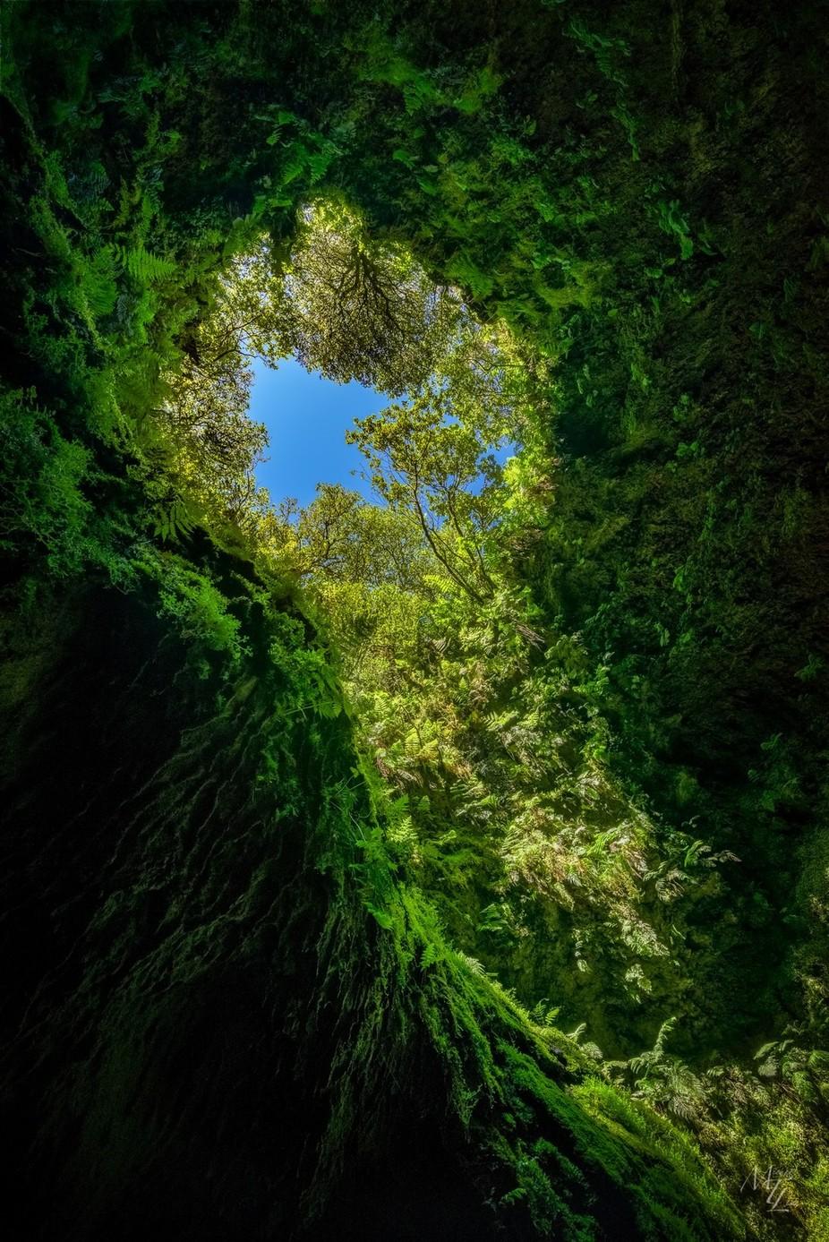 Algar do Carvão by miketlim - Depth In Nature Photo Contest