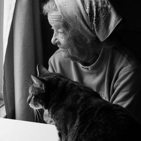 My grandma came to visit me for a few days and my cat, Roxie took a liking to her right away. We live on a busy street in our town and there is a...