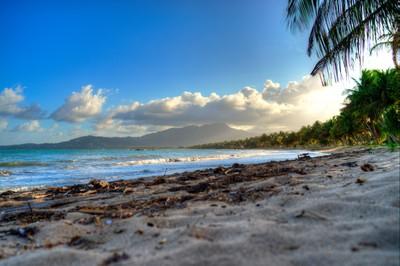 The Mystery Beach