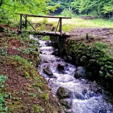 Last year (2014) we went to Bulgaria with the family for a couple of  weeks.  before we came back to Cyprus, we stayed at the Vitosha Mountains near the capital city of Sophia.  This was one of the photos I took while I was there.