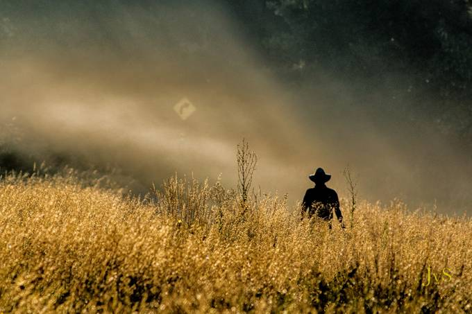 Light Beams on Walker by DutchTouch - Lost In The Field Photo Contest