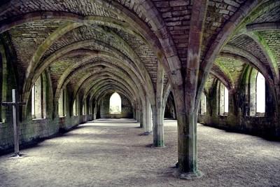 The Abbey Cellarium