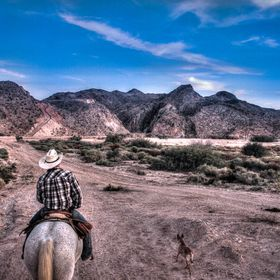 I took this picture last year whilst horseback riding in the Mojave desert. It wa my first time on a horse so I figured it would be a good time t...