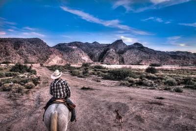 Horseback Riding Mojave