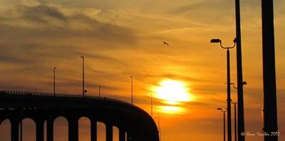 Sunset over Belair _5948