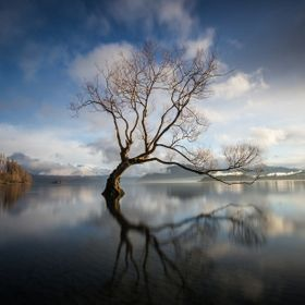 A very chilly sunrise in Wanaka. 3 degrees. I sat with the many other photographers shooting before sunrise. Once they left I took off my shoes a...