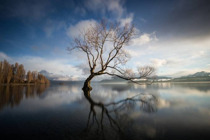 Reflections from the Wanaka Lake by michellemckoy - Lakes And Reflections Photo Contest