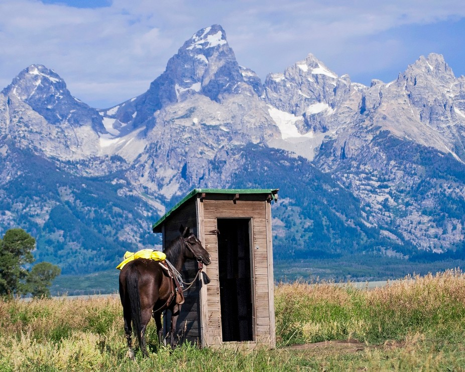 A Cowboy\'s Office is of my horse Meg in front of the Grand Tetons. It has a western humor twist t...