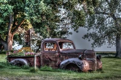 Dodge Garden