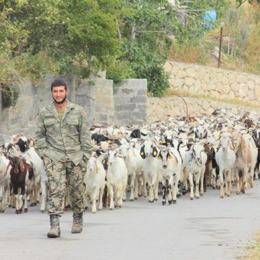 This photo was taken in the year 2013, at Çınarlı Village. I was there with my students on a photography trip. This shepherd suddenly appeared from nowhere with his flock of goats following him.