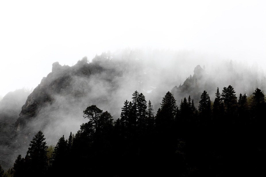 Fog surrounds the mountains and trees near the very peak.