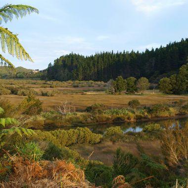 Gnunguru River