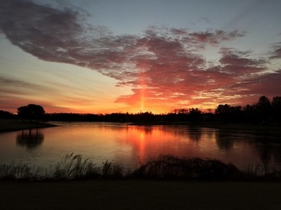 The morning light.