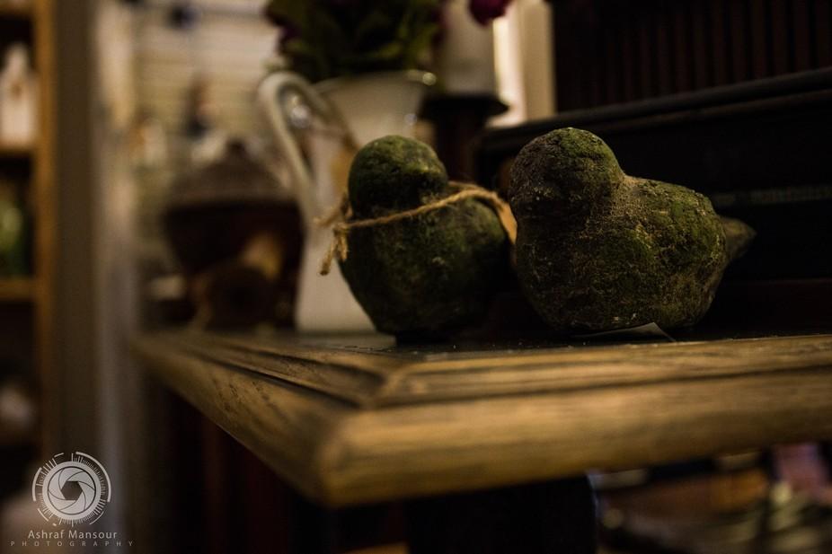 Mossy stone, antique doves.