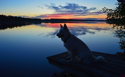 Guardian of the Lake, watchful through the night
