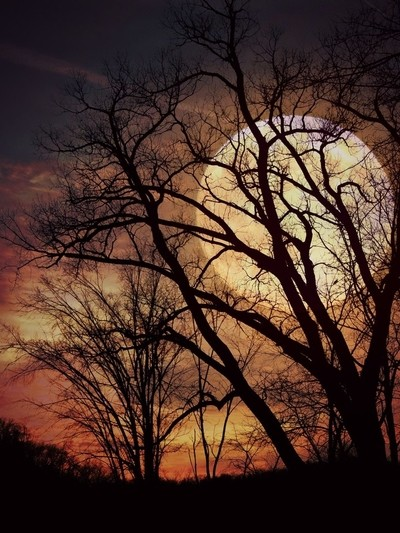 Violet Skies with Moon