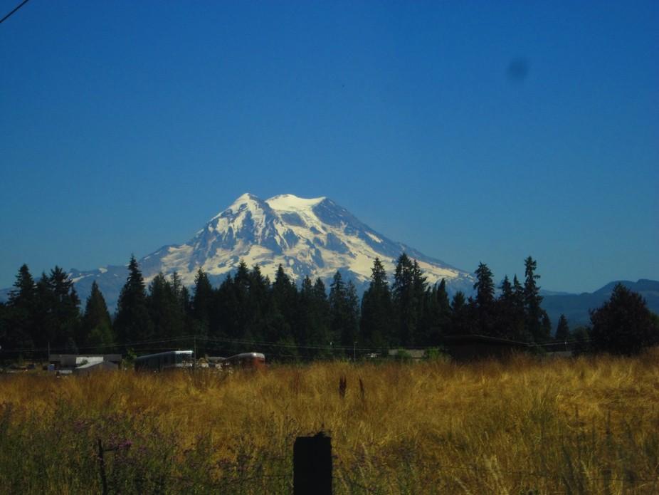 Mt. Rainier, WA State