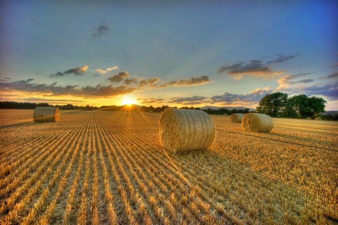 Straw Sunset  by myleslambert - Dry Fields Photo Contest
