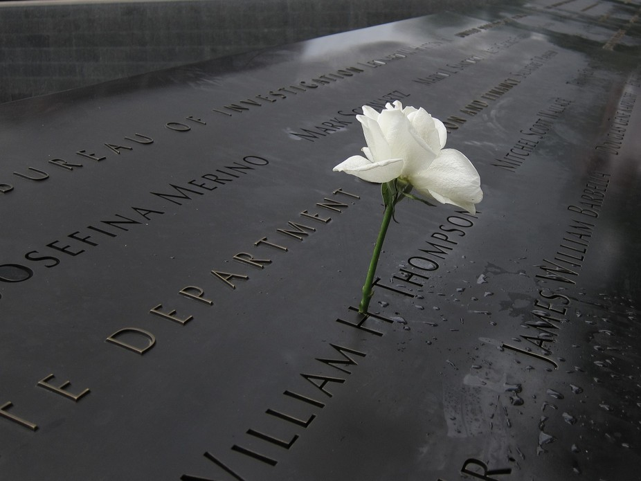 This is one of the many white roses placed on the black marble memorial in New York.