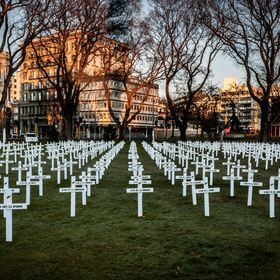 To celebrate the 100 year anniversary of WWI, crosses for each of those servicemen from Otago who died in battle.