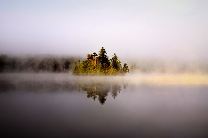 4631 by mikesteege - Mist And Drizzle Photo Contest