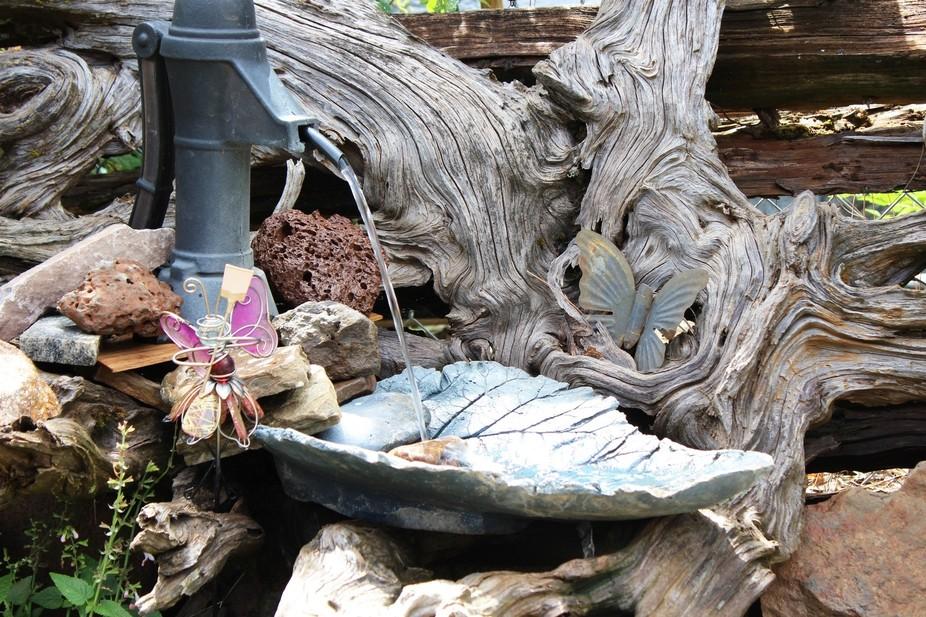 Bird bath that creates a feeling of calm!