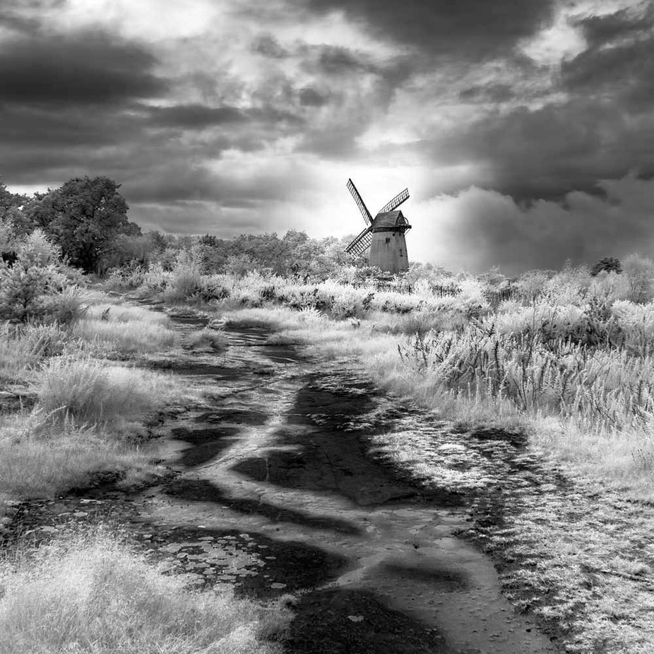 Sentinel by MichaelGarton - Black And White Landscapes Photo Contest