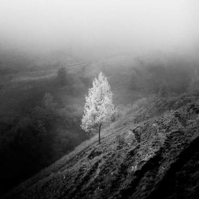 Solitary slopes