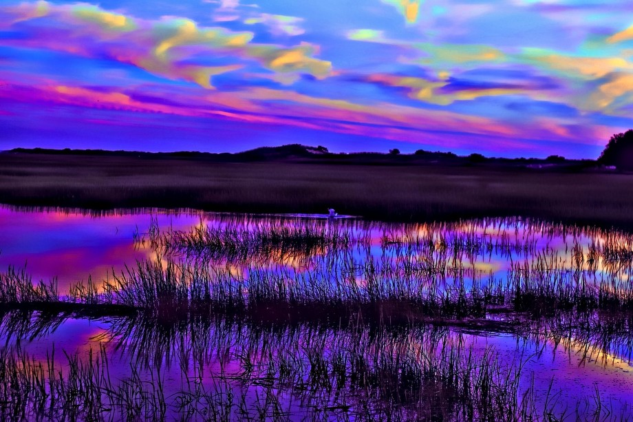 The vivid sky is reflected in the water at this salt marsh in the Province Lands, Provincetown, M...