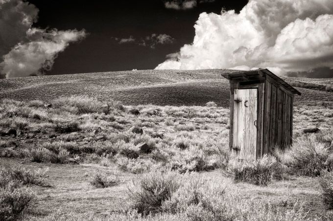 A Little Privacy by ClaudiaKuhn - Dry Fields Photo Contest