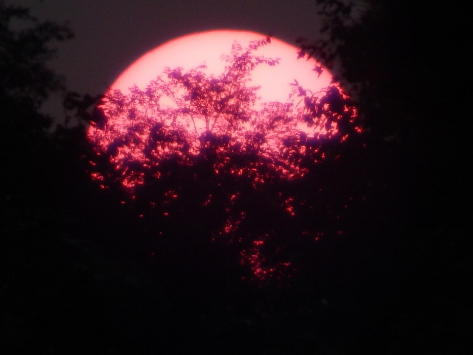Sunset- Red sun