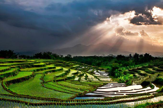 beauty soul_bambang wirawan_085643889022 by bambang - World Expeditions Photo Contest