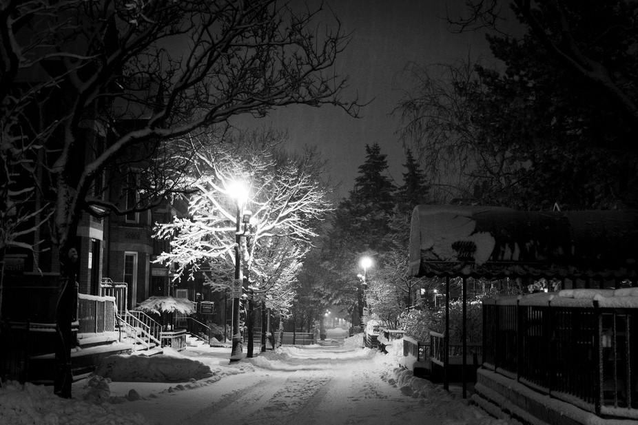 George Street by Allan Hamilton