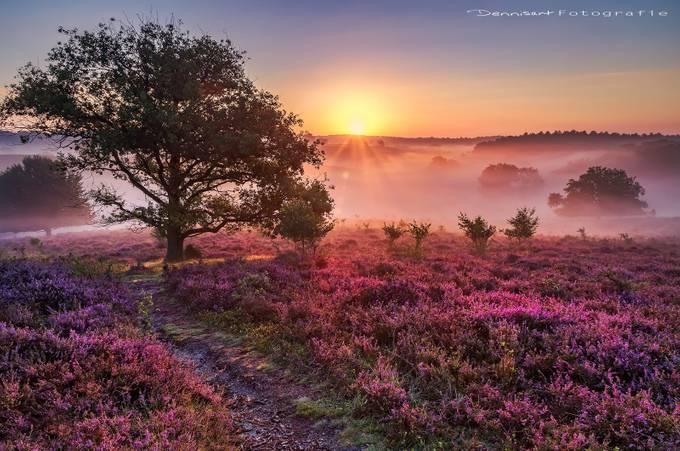 Posbank sunrise by DennisartPhotography