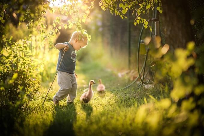 gooseherd by Iwona - Children In Nature Photo Contest